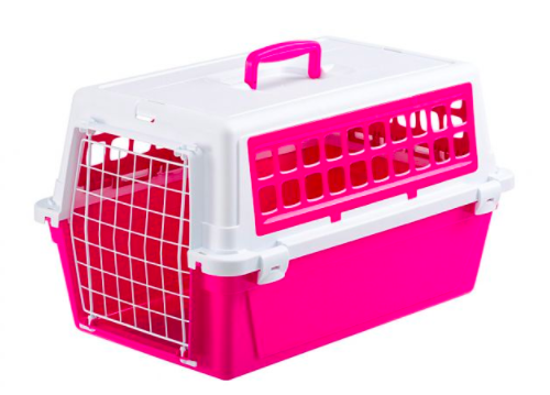 transportbur katt test