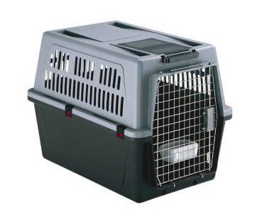 transportbur till katt